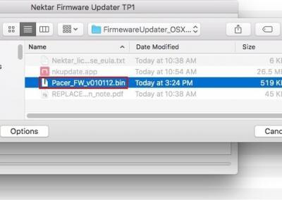 Image 9) .bin firmware file for Pacer